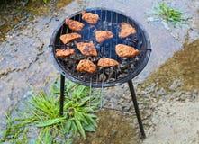 Jarski grilla stek Obraz Stock