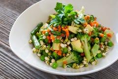 Jarski jedzenie: Piękna wyśmienicie sałatka z avocado, broccol fotografia stock