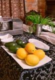 Jarski karmowy kucharstwo fotografia royalty free