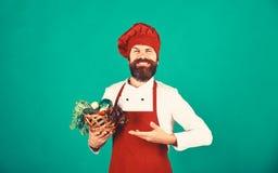 Jarski restauracyjny pojęcie Cook z szczęśliwą twarzą w Burgundy mundurze fotografia stock