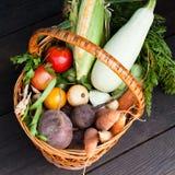 Jarski rolnictwo asortyment, ?wie?y ?yciorys jedzenie Dieta Superfood obraz royalty free