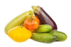 Jarski zdrowy jedzenie z warzywami Pomidor, ogórki, krzak Zdjęcia Stock