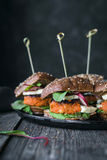 Jarskiego tofu hamburgeru marchwiani suwaki Obraz Stock