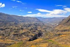 jaru colca Peru Zdjęcia Stock