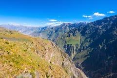 jaru colca Peru Obrazy Stock