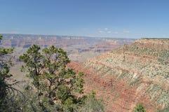 jaru Colorado uroczysta rzeka E formacje geologiczne Fotografia Stock