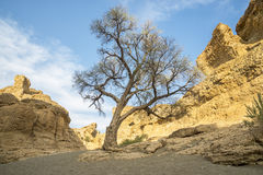 jaru namib Namibia krajowy naukluft parka sesriem sossusvlei Zdjęcia Royalty Free