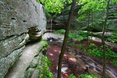 jaru sowy parka skały głodujący stan Fotografia Royalty Free