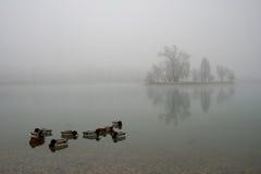 jarun jezioro Zdjęcie Stock