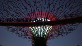 Jarzący się kolory Supertree i zmieniający zdjęcie wideo