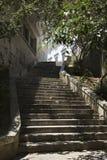 jarzębaty Portugal Lizbońskiej będzie słońce obrazy stock
