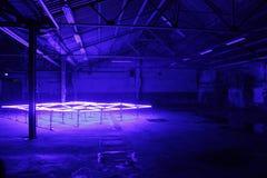 Jarzeniowa sztuka w starej fabryce (JARZENIOWY EINDHOVEN 2014) Zdjęcia Stock