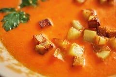Jarzynowa polewka robić od marchewek, cebul i dzwonkowych pieprzy, Obrazy Royalty Free