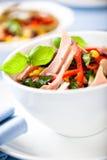 Jarzynowa sałatka z tuńczykiem i świeżymi ziele Obrazy Stock