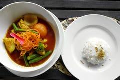 Jarzynowego curry'ego etniczny naczynie & ryż Obraz Royalty Free