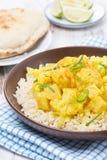 Jarzynowy curry z kalafiorem i ryż, zakończenie Fotografia Stock