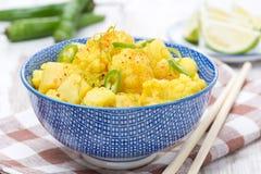 Jarzynowy curry z wapnem, chili i mennicą, zakończenie Obraz Stock