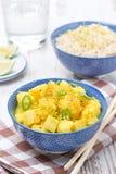 Jarzynowy curry z wapnem, pionowo Zdjęcie Royalty Free