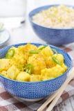 Jarzynowy curry z wapnem, zakończenie Zdjęcia Stock