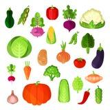 Jarzynowy lata żniwo, weganinu jedzenia kolekcja Grula, napy kapusta i capsicum czerwony pieprz, annuum lub dzwonkowy i Obrazy Stock