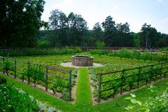 Jarzynowy ogród przy Mount Vernon Zdjęcie Royalty Free