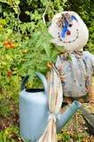 Jarzynowy ogród z strach na wróble zdjęcia royalty free