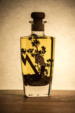 Jarzynowy olej z pikantność w butelce Zdjęcie Stock