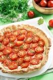 Jarzynowy pomidorowy kulebiak Obrazy Royalty Free