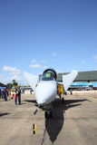 JAS 39 Gripen show at Wing7 Airbase on Thai Children's Day. SURATTHANI, THAILAND- JANUARY 10: JAS 39 Gripen show at Wing7 Airbase on Thai Children's Day on Royalty Free Stock Photo