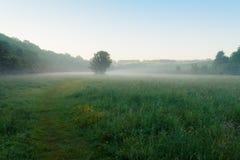 Jaskiery w mgle Obrazy Royalty Free