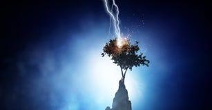 Jaskrawa błyskawica uderza drzewa Zdjęcie Royalty Free