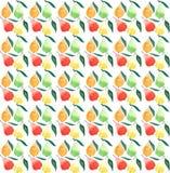 Jaskrawa dojrzała soczysta bonkrety pomarańcze zieleni czerwień i żółci kolory z zielonymi liśćmi deseniujemy akwarelę Obraz Stock