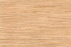 Jaskrawa naturalna dębowego drewna tekstura na makro- Fotografia Royalty Free