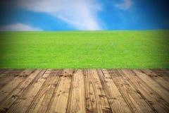 Jaskrawa piękna łąka Zdjęcie Royalty Free