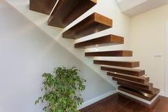 Jaskrawa przestrzeń - schodki i roślina obrazy stock