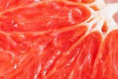 Jaskrawa soczysta grapefruitowa braja w górę zdjęcia royalty free