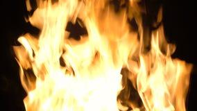 Jaskrawe iskry płomień, 4k zbiory wideo