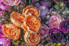 jaskrawe peonie, sztuczni kwiaty zdjęcia stock