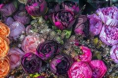 jaskrawe peonie, sztuczni kwiaty obrazy royalty free