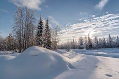 Jaskrawej zimy śnieżny krajobraz, backlight zdjęcie royalty free