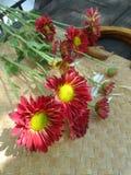 Jaskrawi czerwoni kwiaty na bambusie weaven kosz Zdjęcia Stock