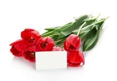 Jaskrawi czerwoni tulipany i opróżniają kartę dla listu Zdjęcia Royalty Free