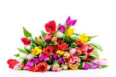 Jaskrawi kwiaty Zdjęcie Stock