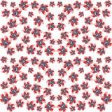 Jaskrawi kwiaty na bezszwowym tle Zdjęcie Stock