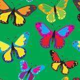 Jaskrawi motyle na zielonym tle Zdjęcia Royalty Free