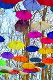 Jaskrawi parasole Jaskrawi, Żywi kolory, odizolowywająca pojęcie czarny wolność Obraz Royalty Free