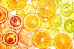 Jaskrawi słodcy cytrusów plasterki na bielu Obraz Royalty Free