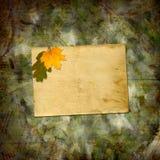 Jaskrawi stubarwni jesień liście na abstrakcjonistycznym pięknym tle royalty ilustracja