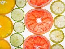 Jaskrawi świezi cytrusów plasterki, plecy lekka przejrzysta owoc Obraz Stock