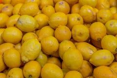 Jaskrawy żółty owocowy cytryny tło ustawia set owoc składnika baza lemoniada deseru i koktajlu warkoczy świeżość sourish zdjęcia royalty free